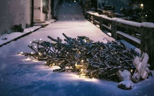 Holiday Decoration Recycling Available In Catawba County