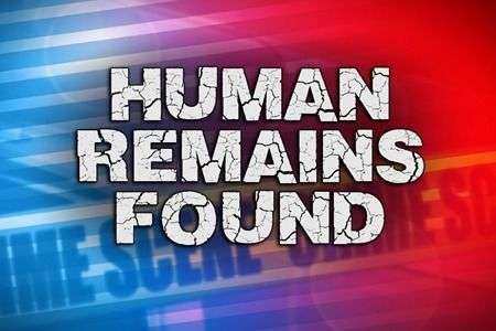 Remains Discovered In Burke County, Investigation Underway